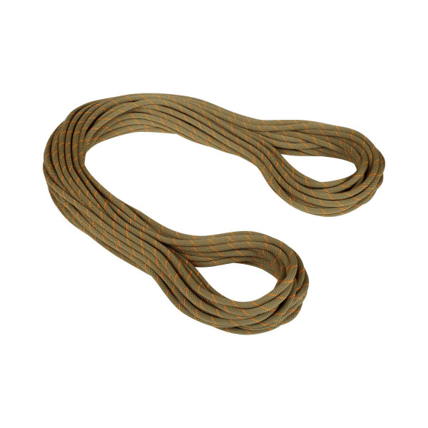 9.9 Gym Workhorse Classic Rope 40m Seil